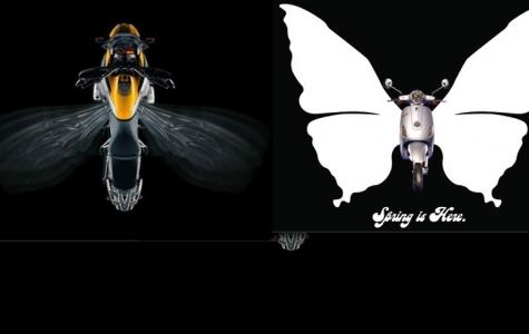 BMW vs Vespa / Arı vs. Kelebek
