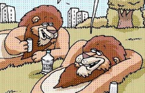 Yeni Rakı Aslanları