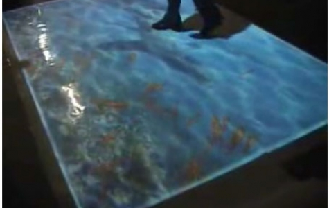 Interactive Projected Fish Tank