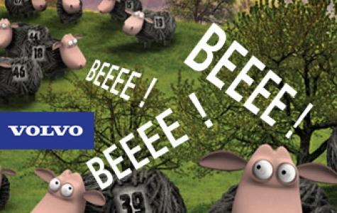Beeee! Volvo'yu koyunlar bastı