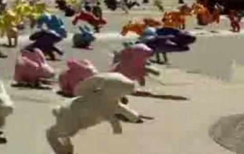Sony Bravia 3 – Karşınızda Tavşanlar!