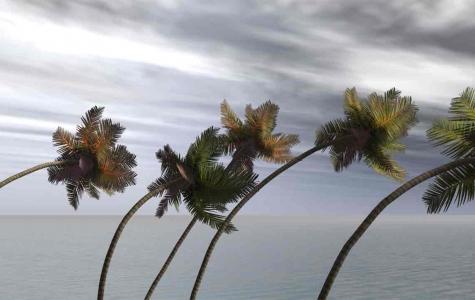 Kasırga Takip