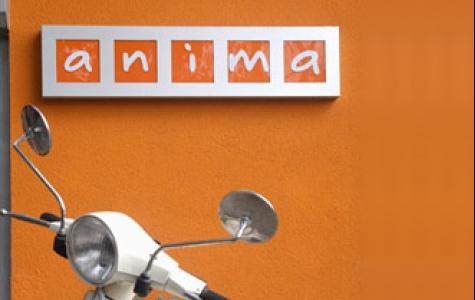 Animasyon stüdyo incelemesi: Anima