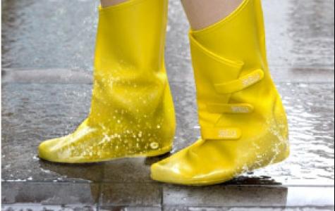 Shuella Ayakkabı Şemsiyesi