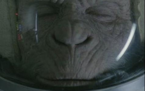 uzaya gönderilen maymunlardan biri dünyaya geri dönüyor – WW