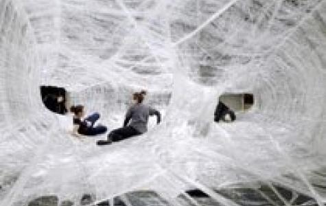 koli bantından dev örümcek ağı