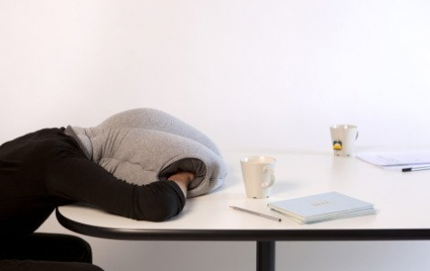Ostrich: Ofis canlıları için masa üzerinde uyuma kiti
