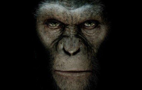 Rise of the Planet of the Apes: Maymundan daha zeki misin?