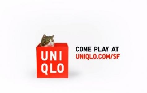 İnternetin Ünlü Kedisi Maru Uniqlo Reklamlarında