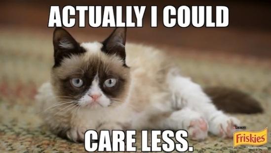 İnternet Mimi Grumpy Cat Kedi Maması Reklamında