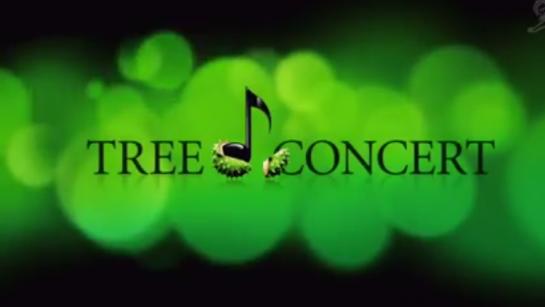 Berlin'in Ortasında Doğayı Korumak İçin Konser Veren Ağaç