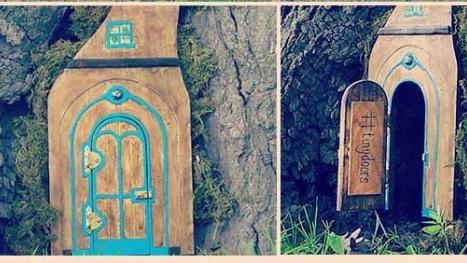 Abur Cubur Markasından Ağaç Diplerinde Minik Sihirli Kapılar