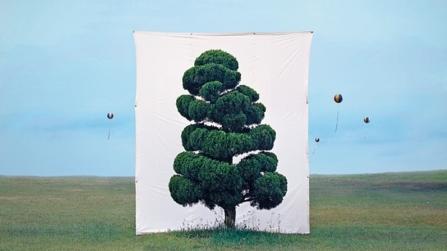 Güney Kore'den Ağaç Sanatı: Orman İçinde Orman