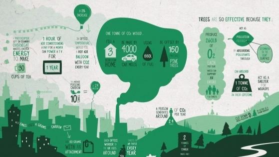 Project Urban Forest: Kentte Ağaçlarla Karbon Salınımı Mücadelesi