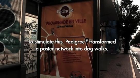 Köpeklere Özel Reklam Panosu