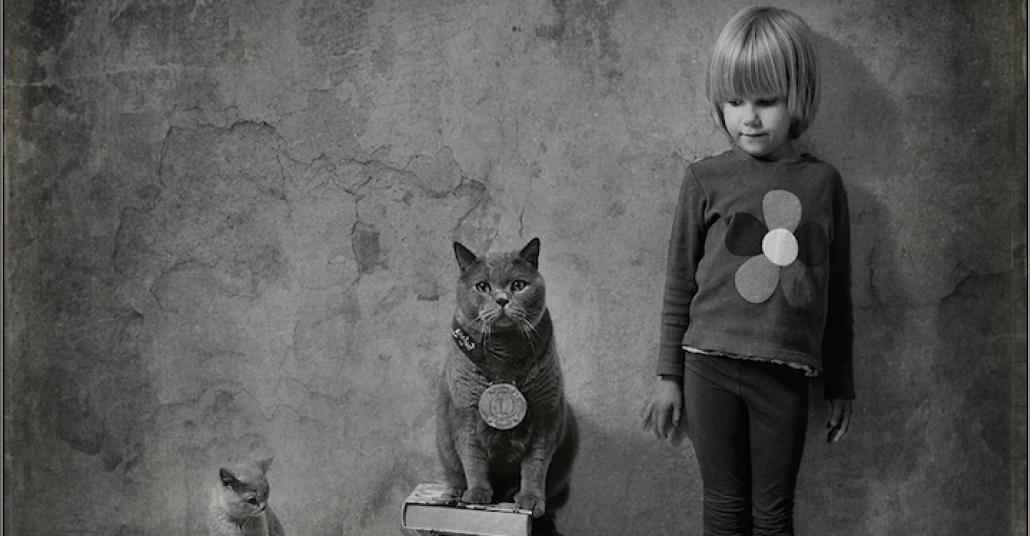 Bir Çocuk, İki Kedi ve Harika Fotoğraflar