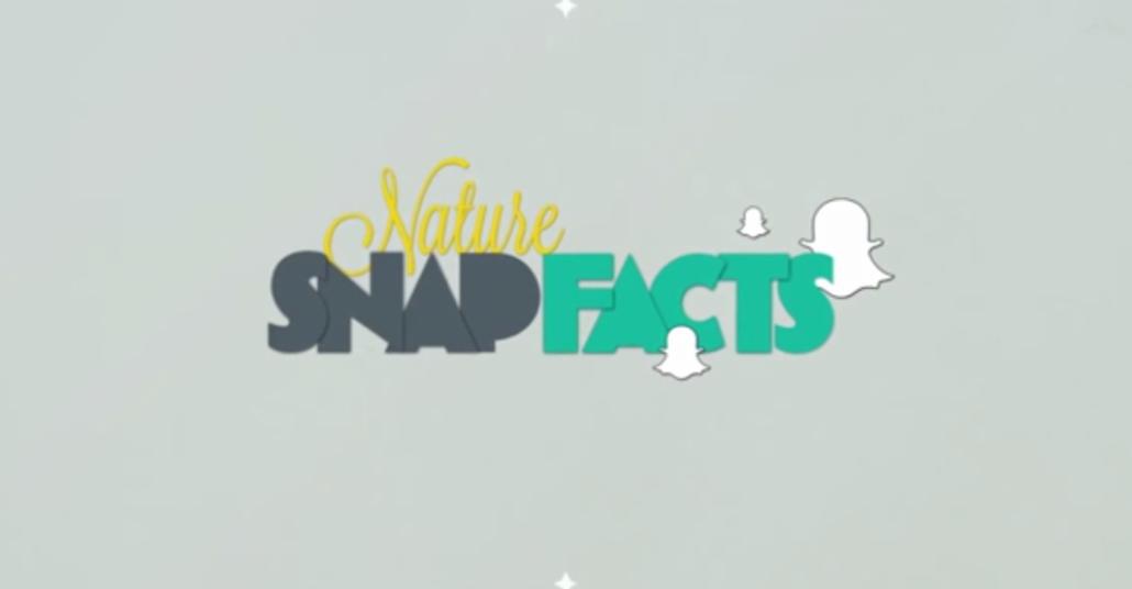 OndAzul'dan Snapchat'te Doğayla İlgili Kısa Gerçekler