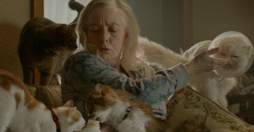 Çok Kedili Kadın Süt Reklamında