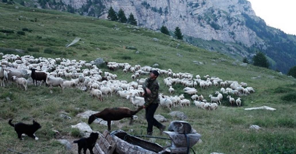 Le Grand Silence: Doğada Yaşayan Kardeşin Fotoğrafları