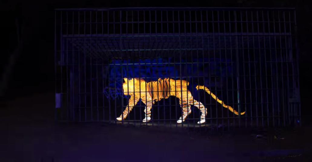1.000 Işık Boyama Fotoğrafından Bir Stop Motion Animasyon