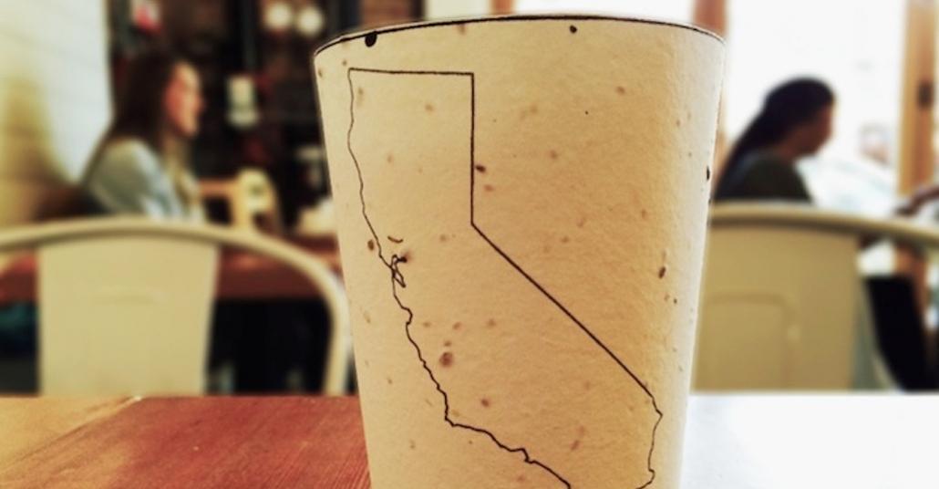 Toprağa Ekilebilir Kahve Kartonları