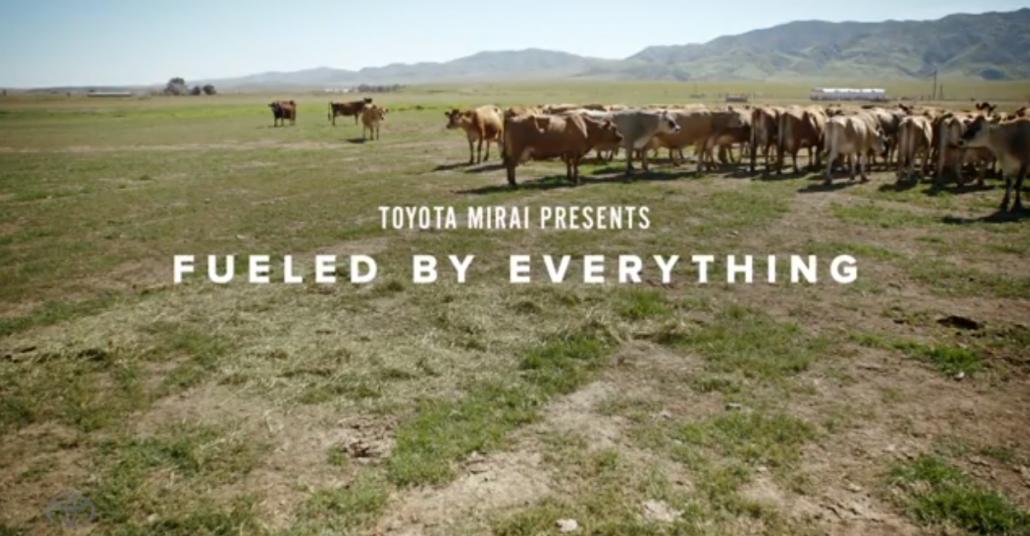 Toyota'nın İnek Gübresiyle Hidrojen Yakıtlı Otomobil Savunması