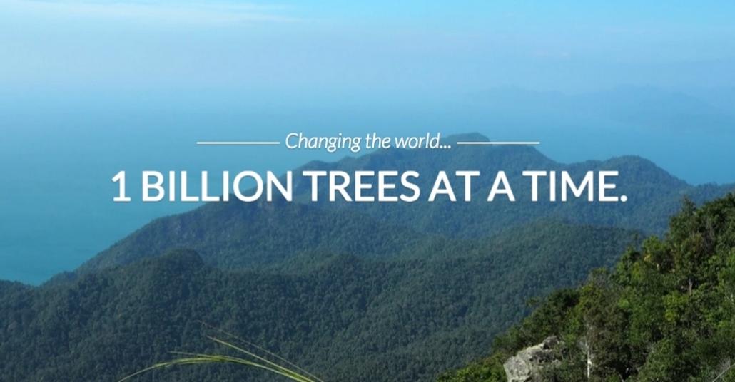 Drone Kullanarak Bir Yılda Bir Milyar Ağaç Dikmek