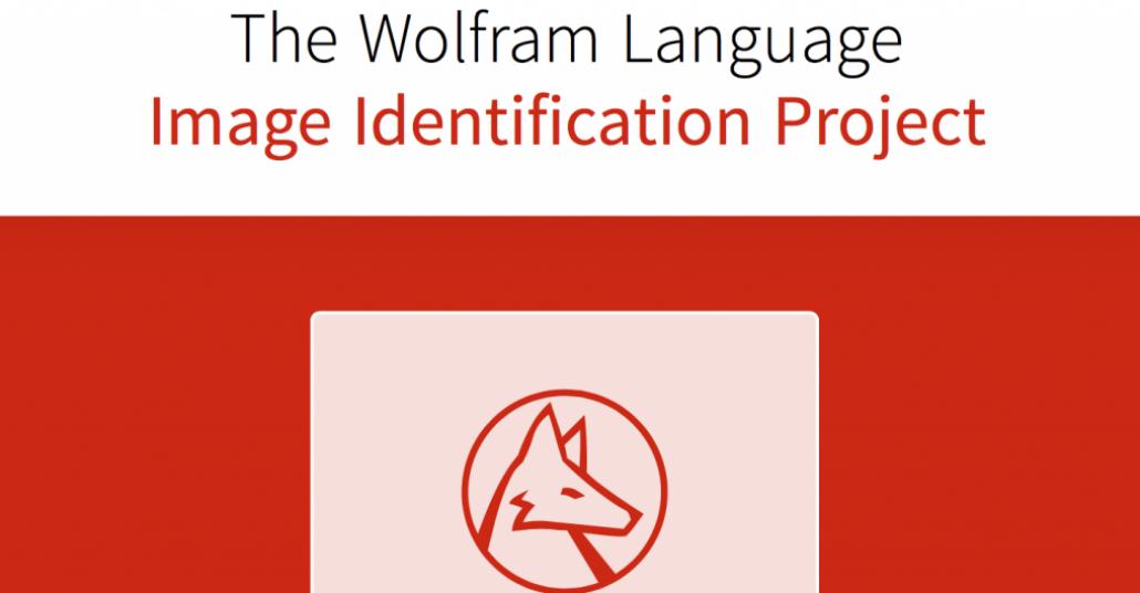 Wolfram'ın Görsel Tanımlayabilen İnternet Sitesi: Imageidentify