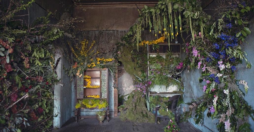 Detroit'in Terk Edilmiş Evleri Çiçek Açıyor