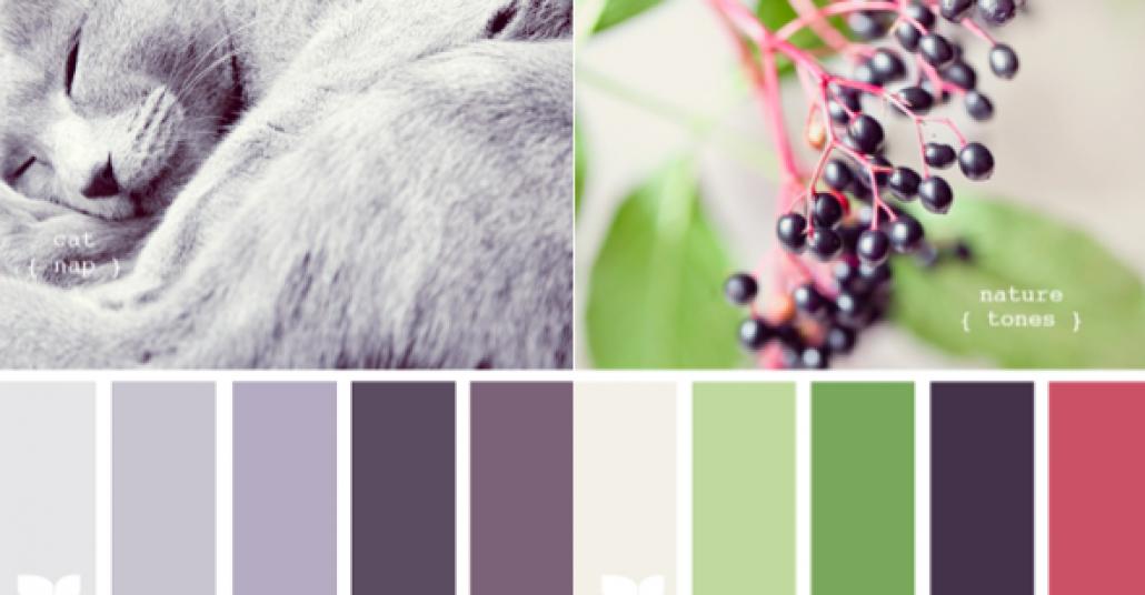 Doğadan İlham Alan Renk Paletleri