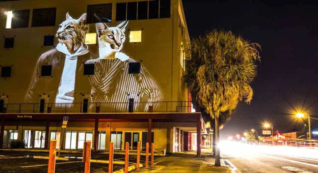 Kent Duvarlarına Yansıtılan Dijital Sokak Sanatı