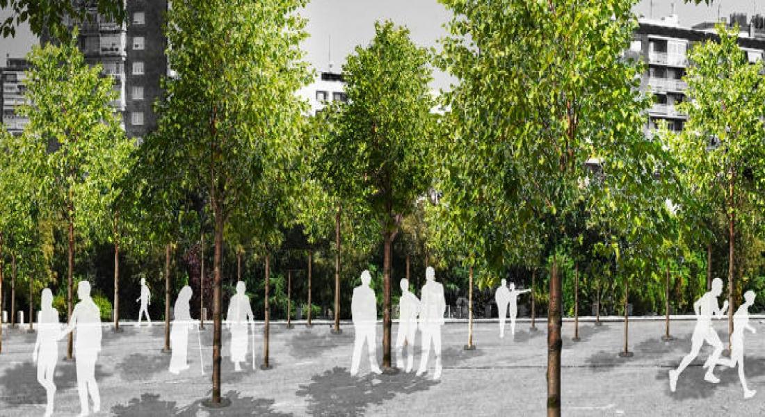 Madrid, İklim Değişikliğine Karşı Kendini Ağaçlarla Donatıyor