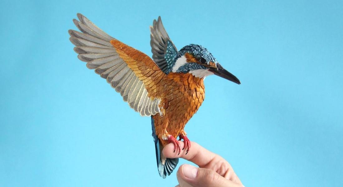 Her An Uçacakmış Gibi Görünen Kağıttan Kuş ve Kelebekler
