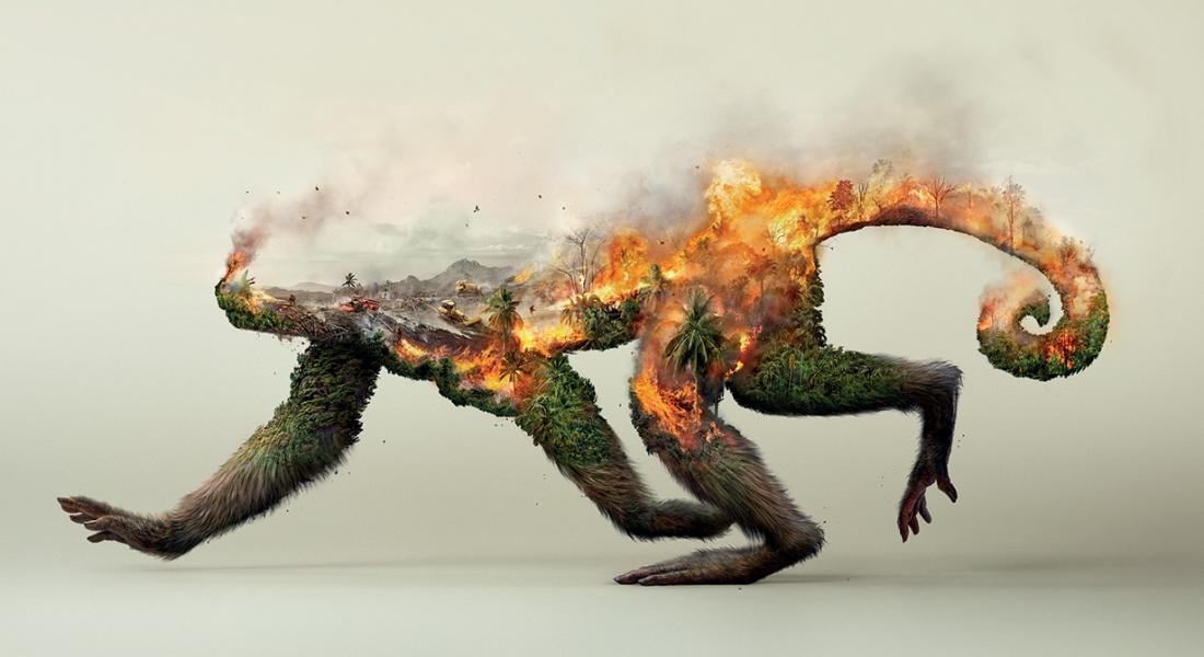 Doğayı Yok Etmek Tüm Yaşamı Yok Etmektir