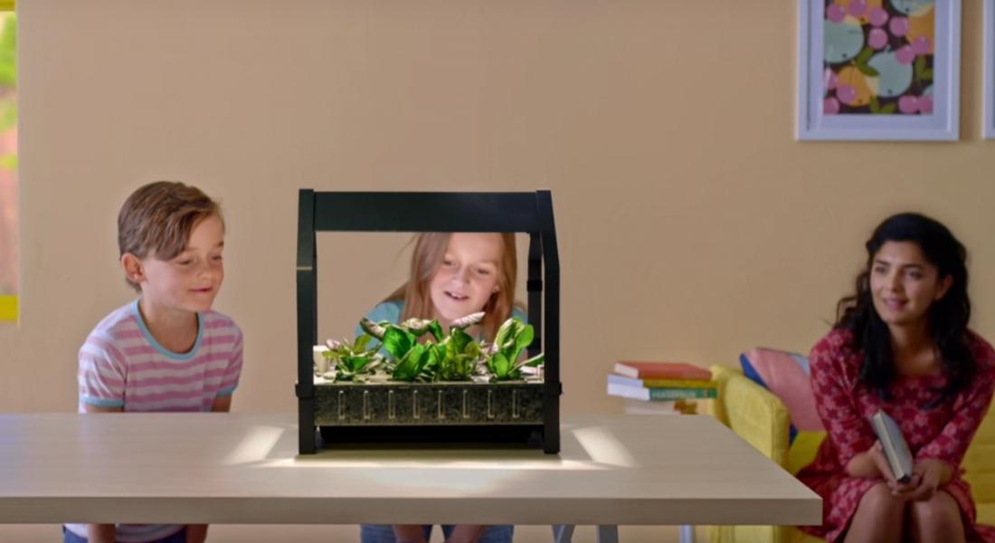 IKEA'nın Yaşam Alanınızı Yeşillendirecek Mini Bahçe Kiti