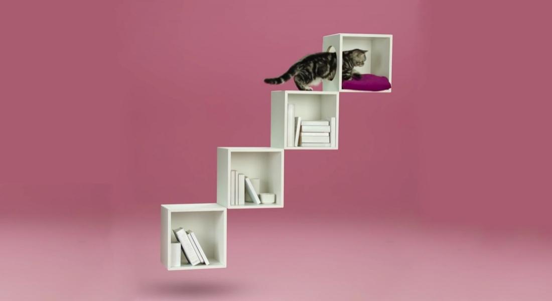Whiskas'tan Birkaç Adımda Şık Kedi Oyuncağı Yapma Rehberi