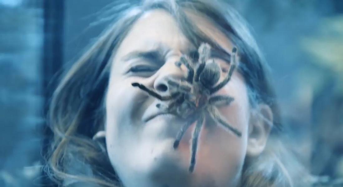 Yüzünüzde Örümcek Varken PlayStation Oynayabilir Misiniz?