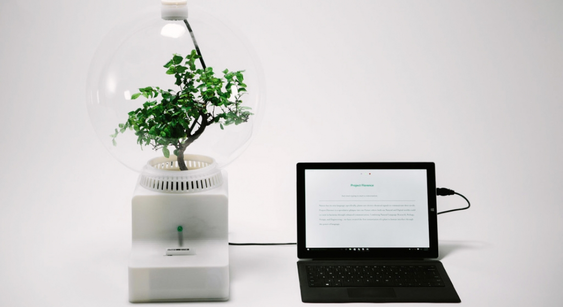 Microsoft Bitkilere Konuşmayı Öğretiyor