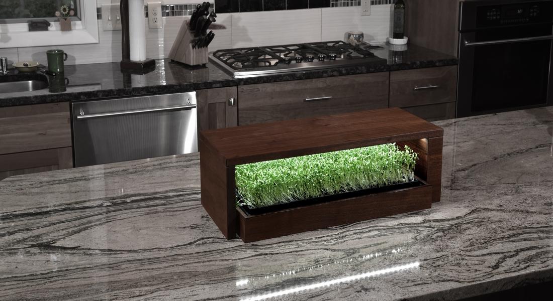 Grow Bar: Ev Tipi Bitki Yetiştirme Sistemi