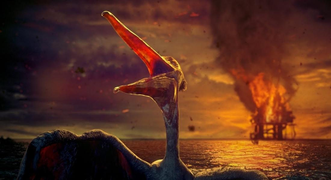 Vahşi Yaşamın Huzurunu Nasıl Bozduğumuzu Gösteren Animasyon