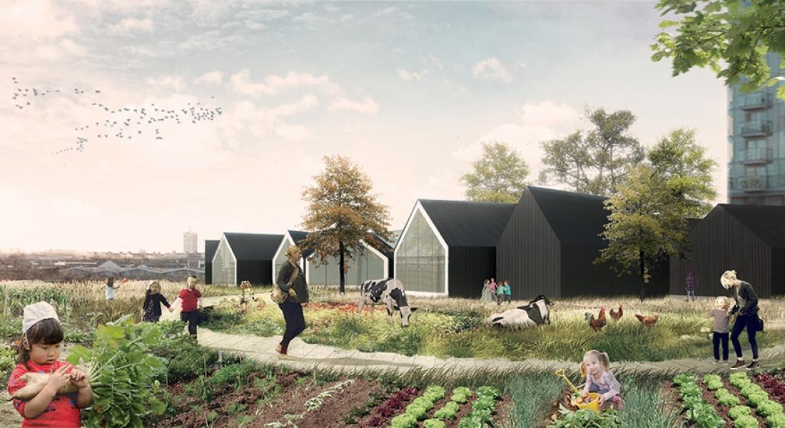 Geleneksel Anaokulu Anlayışı ile Çiftlik Yaşamını Birleştiren Proje: Nursery Fields Forever