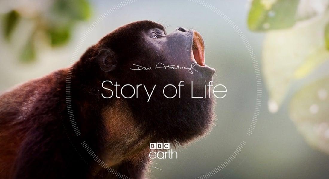 David Attenborough'nun İşlerinin Dijital Arşivi Mobil Uygulama Olarak Yayınlandı