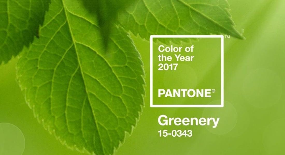 Pantone 2017'nin Rengini Greenery Olarak Belirledi