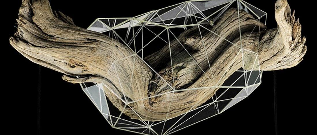 Kelebeğin Gelişimini Dijitalleştiren Soyut Heykeller