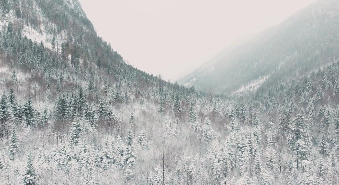 Alp Dağları Üzerinde Huzur Dolu Bir Yolculuk [Video]