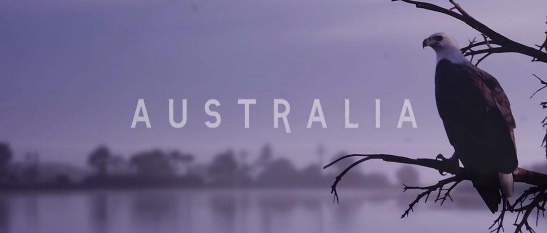 Bir Kartalın Gözünden Avustralya'da Doğal Yaşam [Video]