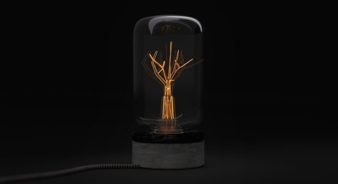 Yangınla Kömüre Dönüşmüş Ormandan Yapılan Lamba