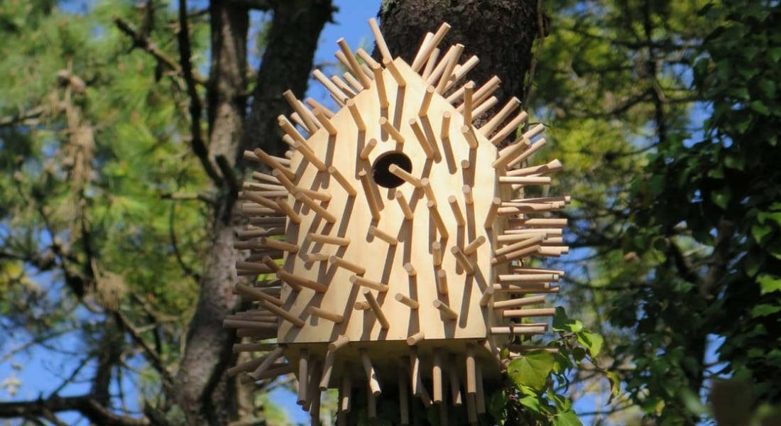 Absürt Kuş Evleri