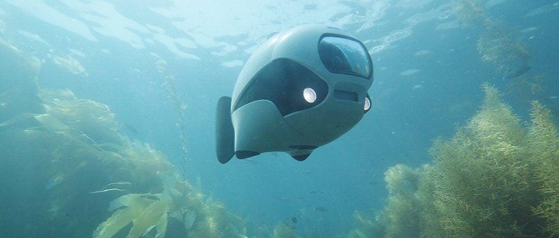 Denizler Altında Bir Balık Drone