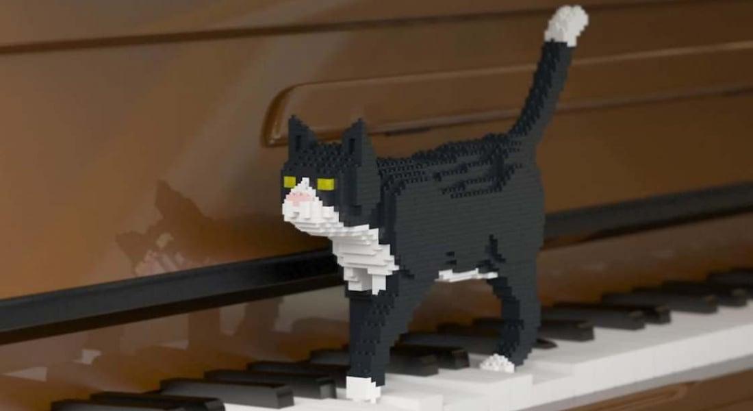 Gerçek Boyutlarda LEGO Kediler